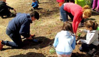 Aldeamayor programa sus tradicionales  jornadas medioambientales entre octubre y noviembre