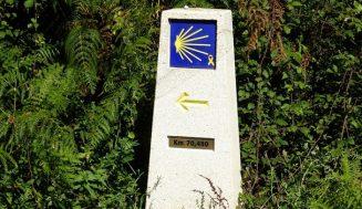 El Camino de Santiago es un viaje para renovar la fe, disfrutar lo natural y llenarse de paz